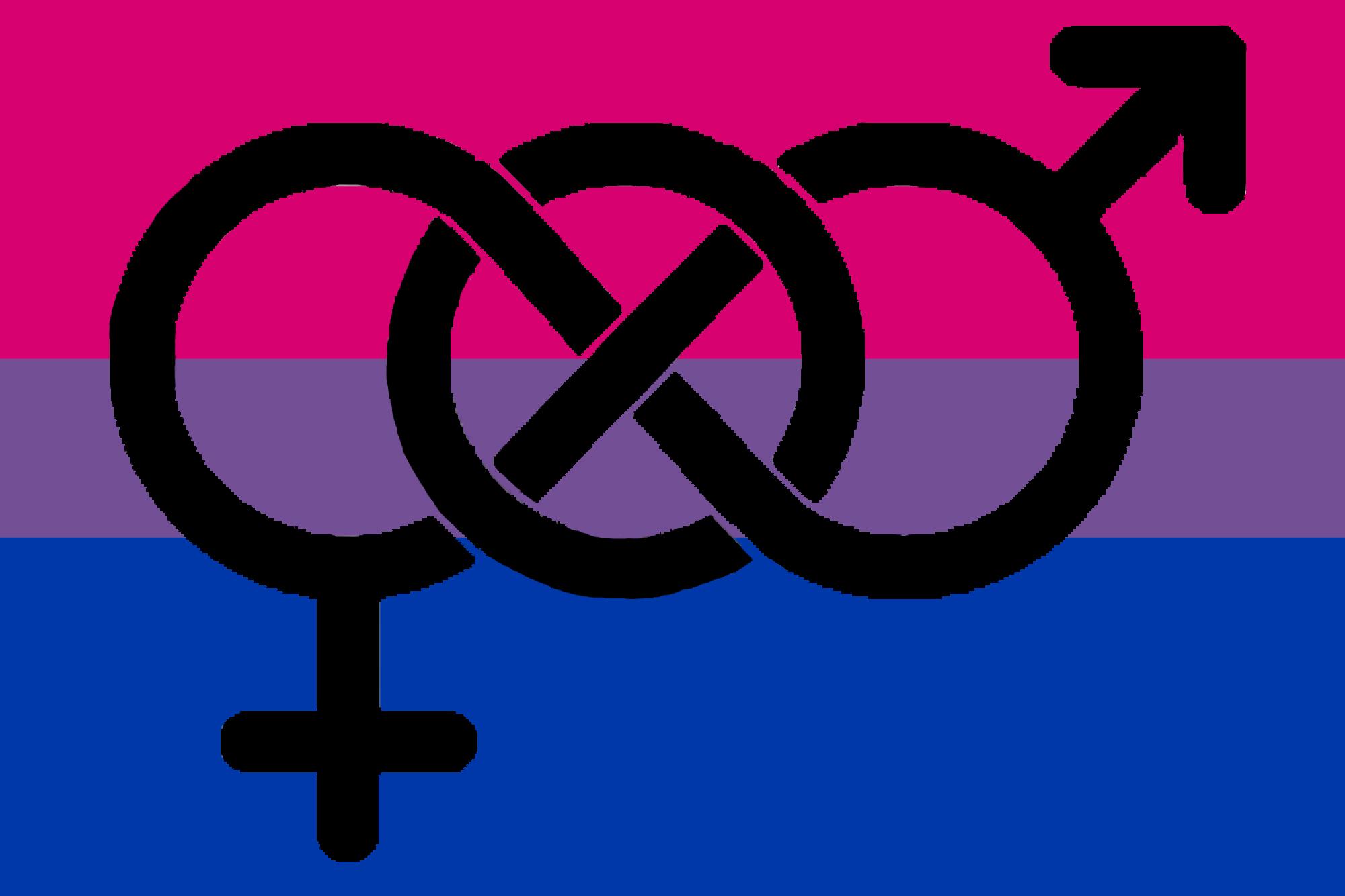 Bisexual pride flag bead earrings midwinter hollow